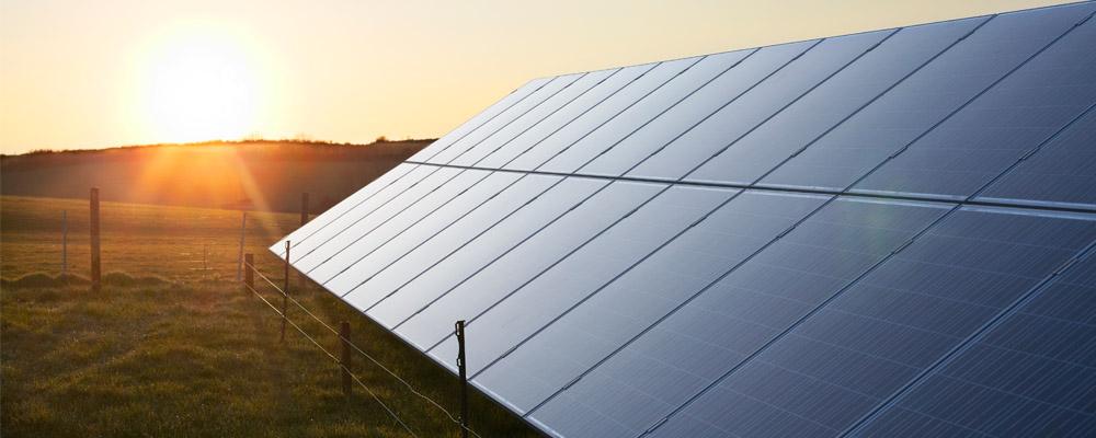 A row of solar panels beneath a rising sun