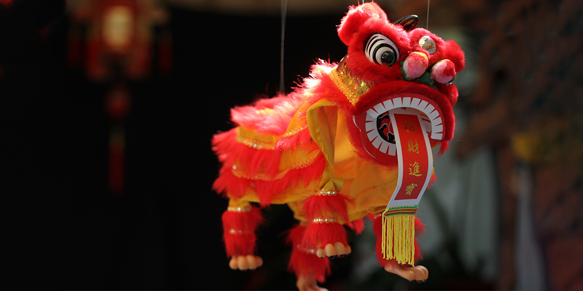Lion dragon - chinese new year