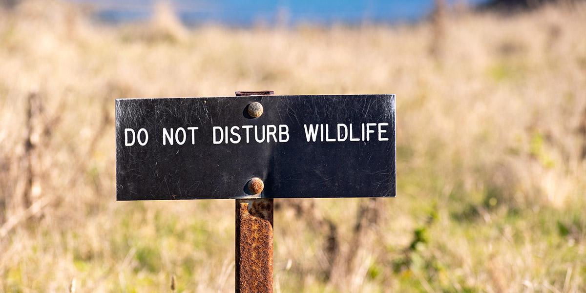 Do not disturb wildlife sign