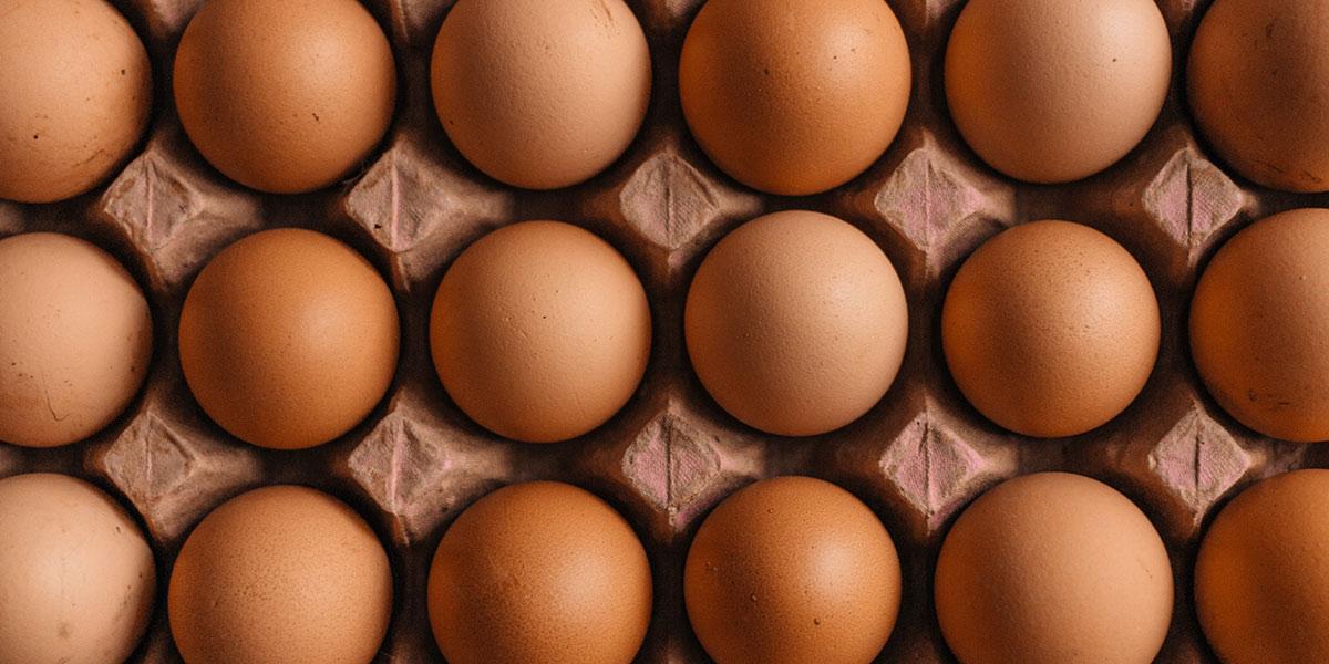 Multiple eggs on a case