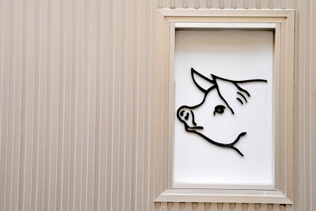 Frame picturing a pig on a wall